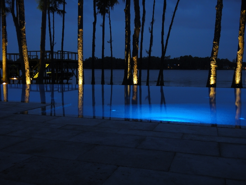led lights for pool and trees