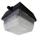 LED Canopy Light Fixture